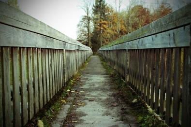bridge-532077_1920